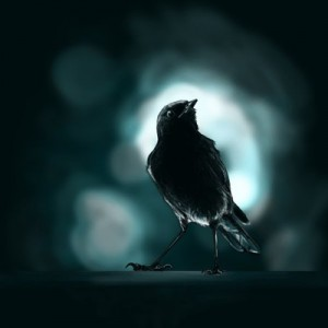 """The song bird at night seems to be a frequent theme in love stories.   """"Ode to A Nightingale""""."""